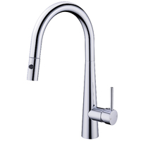 Gooseneck Kitchen Mixer Tap with Pull Out Nozzle